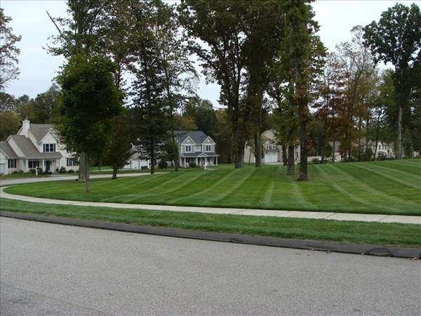 lawn care waterford ct orig