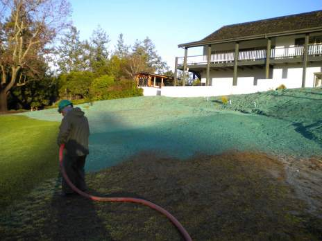 Lawn core aeration and hydroseeding will give you the greenest grass on the block