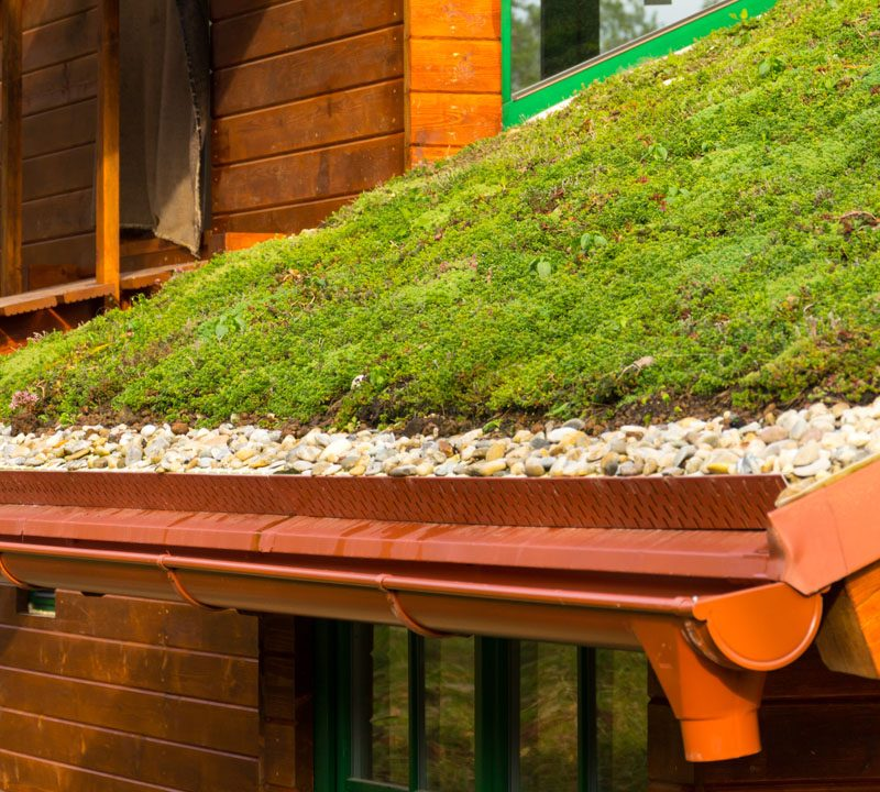 green roof, green walls