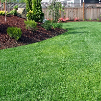 Choosing the right type of grass will give you the results you want for a lush lawn in Groton Connecticut.