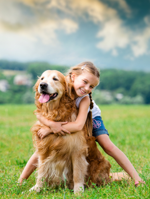 Flea and tick prevention to protect your family