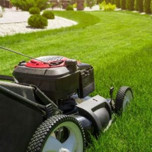 Mowing your lawn in the fall is important to your fall lawn care and will give a boost to your Old Lyme, CT lawn.